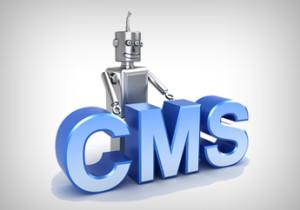 content-management-system_345_x_242